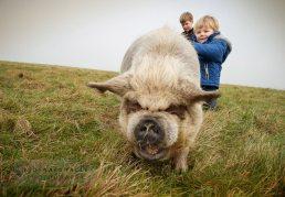 Children - warwickshire photographer