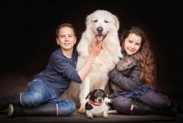 brother and sister with dogs, photographed near stratford-upon-avon
